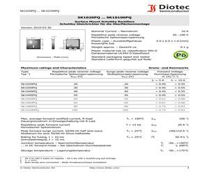 SK10100PQ.pdf